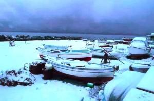 25950-neve-reggio-bar
