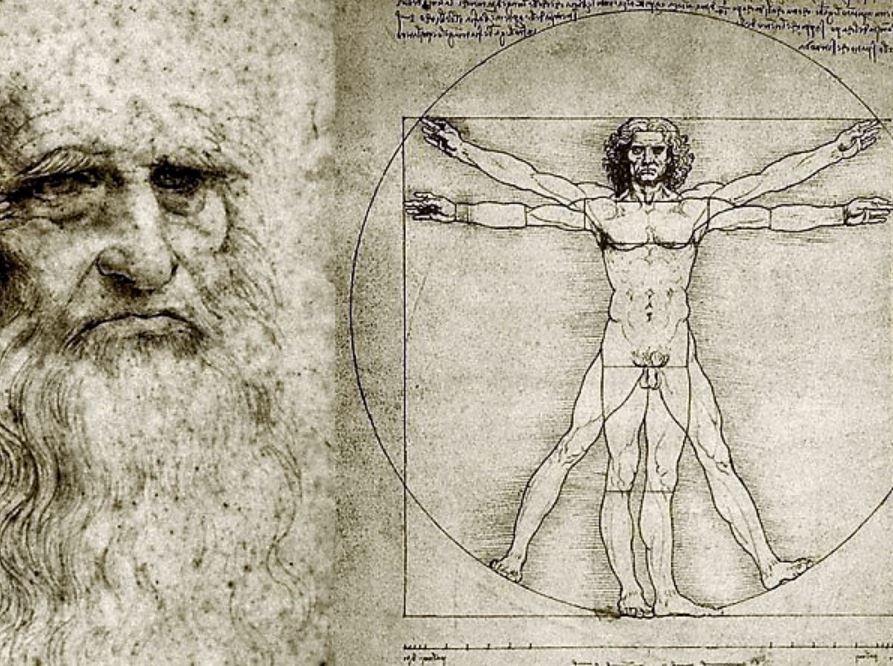 Ziemlich Da Vinci Menschliche Anatomie Zeitgenössisch - Anatomie ...